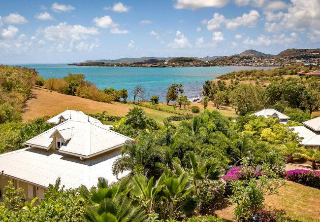 Villa/Dettached house in Le Vauclin - Lady Palm - Amazing villa in 1st line of sea front